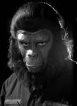 PLANET OF THE APES 1968 - #11717