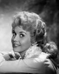 BEVERLY HILLBILLIES 1962 - #11410