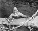 Creature From The Black Lagoon 1954 - #175962