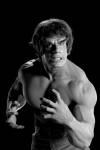 Incredible Hulk - #10292
