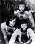 Bee Gees - #171741