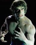 Incredible Hulk - #10302